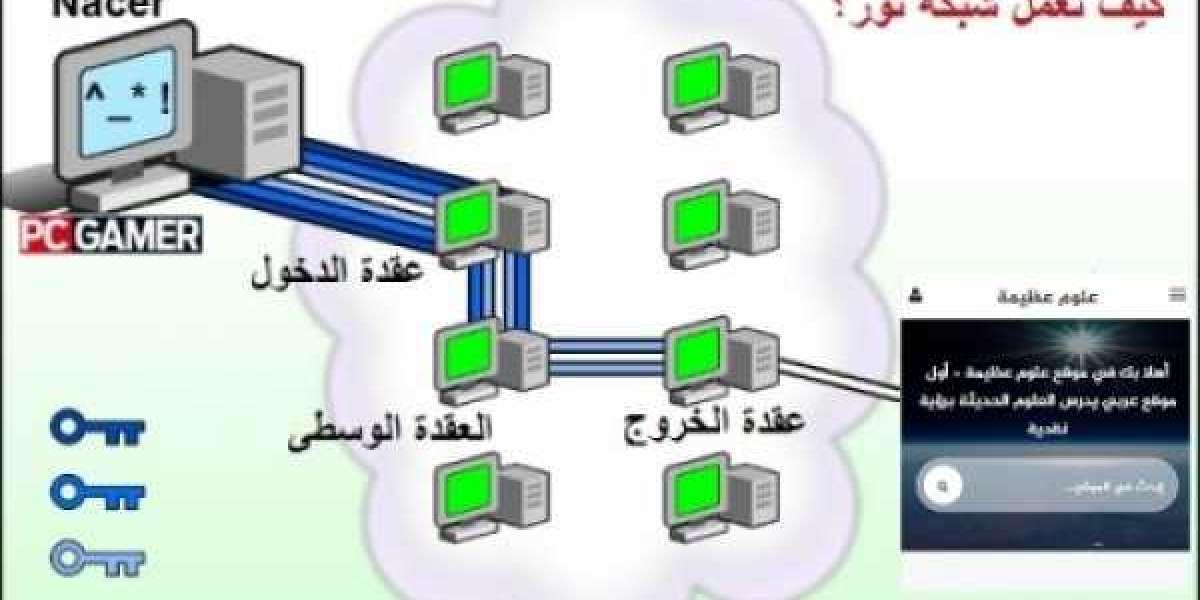 أمن المعلومات الرقمي: شرح شبكة تور للإتصال الامن